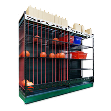 Sports ball cage